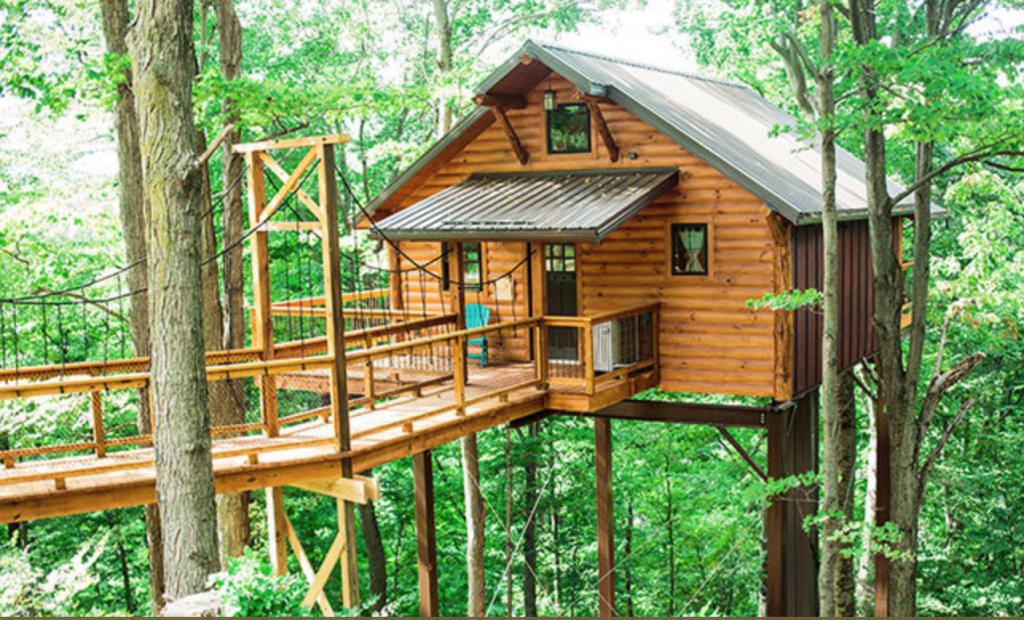 15 Treehouses That Will Make You Feel Like A Kid Again